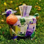 Išmokos smulkiesiems ūkininkams: kam priklauso, kur kreiptis ir kada pasieks pinigines