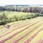 Parama žemės ūkio produktams perdirbti sulaukė ir kooperatyvų dėmesio