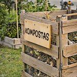 Kompostavimo nauda: dėkingi ir augalai, ir šeimininkai