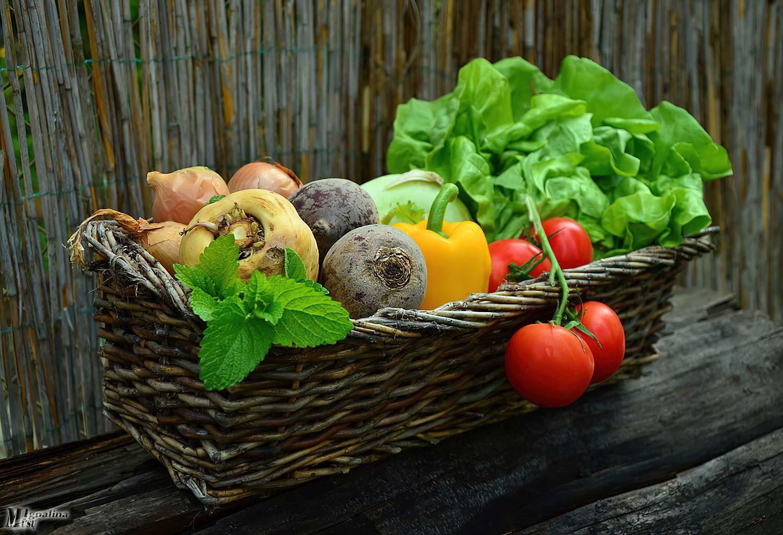 Trumposioms maisto tiekimo grandinėms šiemet – 7 mln. Eur
