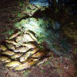 Neteisėtos žvejybos kaina – paimta valtis ir 2 tūkst. eurų siekianti bauda